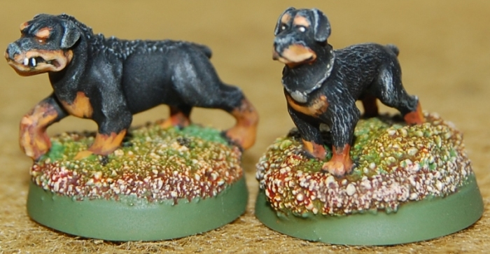 Celtos King of the Gaels' hunting hound, Brigade Models (L) Rottweiler, Bombshell Miniatures (R)